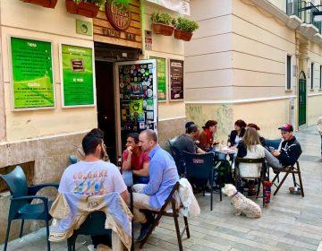 Green Iguana Bar Malaga