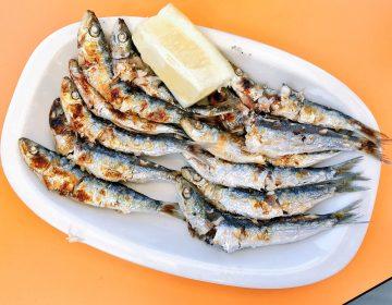 SARDINES BOQUERONES FISH